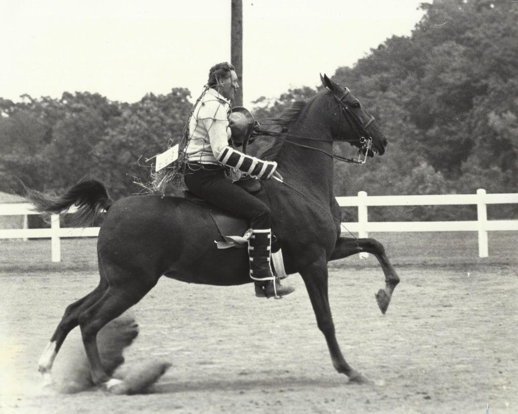 Having fun with a saddlebred